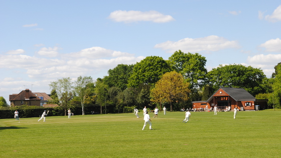 VillageCricket